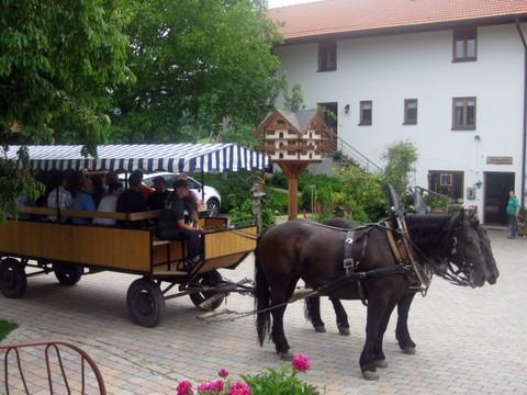 seppenbauer-kutsche-hof-planwagen-1601x1200.jpg