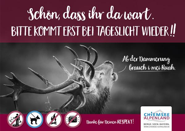 Plakat Hirsch quer