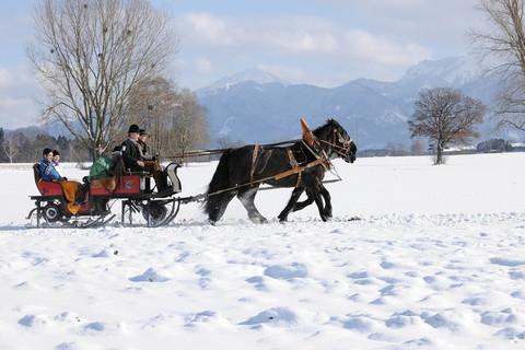 seppenbauer-kutsche-schlitten-ausfahrt-winter.jpg