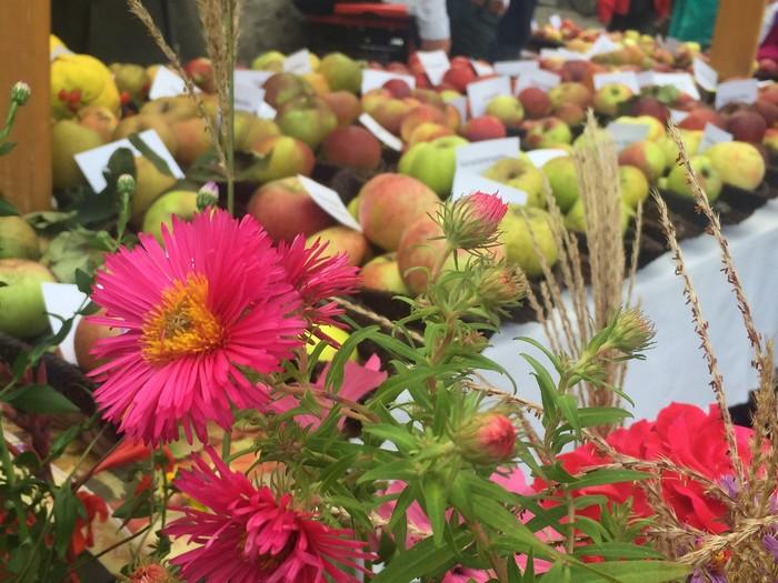 aepfel-auf-dem-bauernmarkt.jpg