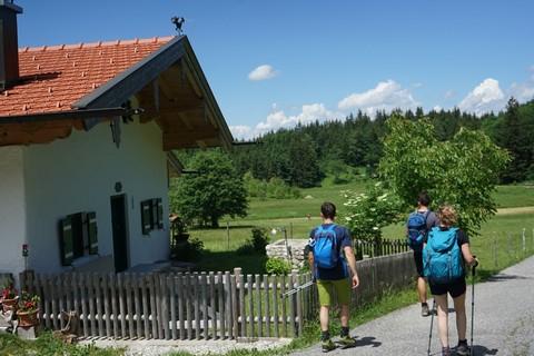 Wanderer-Almgebiet-Moserboden-Samerberg.jpg
