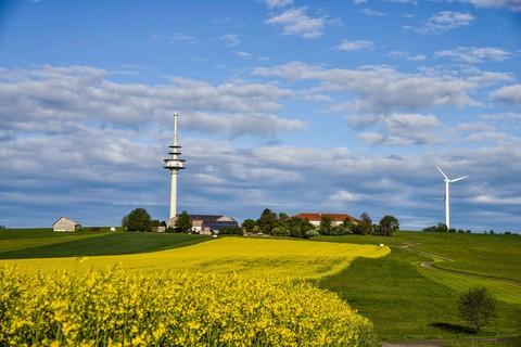 oelmuehle-garting-fuehrung-landschaft-natur-felder.jpg