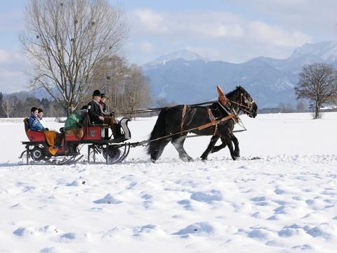 seppenbauer-kutsche-schlitten-ausfahrt-winter-1601x1200.jpg