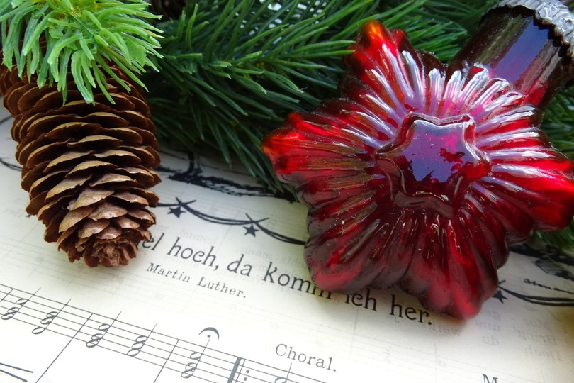 weihnachtslieder-weihnachtsstern-tannenzapfen-weihnachtsstimmung.jpg
