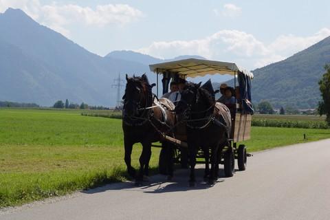 seppenbauer-kutsche-planwagen-strasse-ausfahrt.jpg
