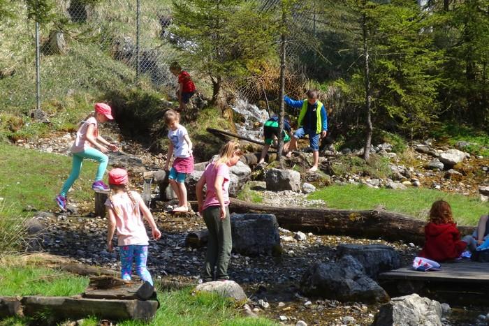 kinder-natur-programme-gruppen-jugend-schueler-freizeit.jpg