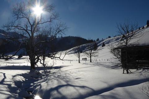 berg-erlebnis-bolland-winter-wanderung-schnee-landschaft.jpg