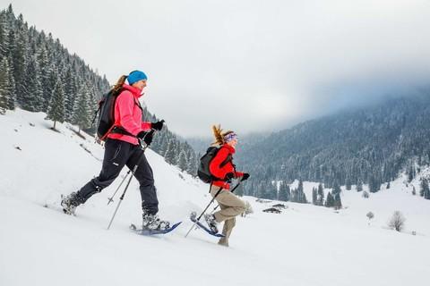 Schneeschuhtour Winter Berg