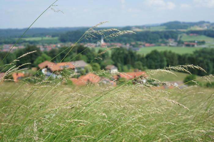 SalzAlpenTour-Wanderung-blick-auf-frasdorf.jpg