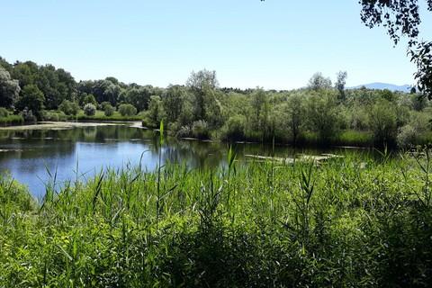 gabriele-faerber-kolbermoor-fuehrung-1.jpg