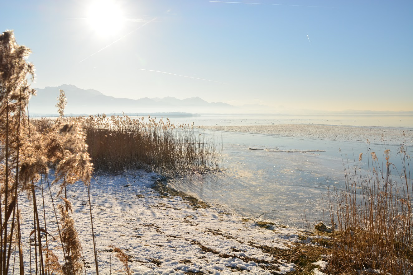 chiemseeufer-im-winter-mit-bergblick.jpg