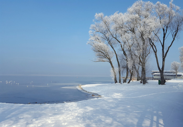 winter-am-chiemsee-felden-(c)chiemsee-alpenland-tourismus.jpg