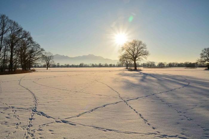 Fußspuren in schneebedeckter Winterlandschaft mit blauem Himmel und Sonnenschein