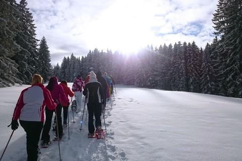 sayaq-schneeschuh-wanderung-tour-winter-schnee-wald.jpg