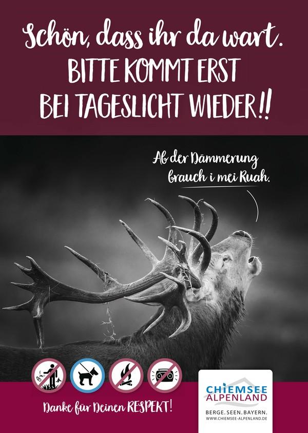 Plakat Hirsch