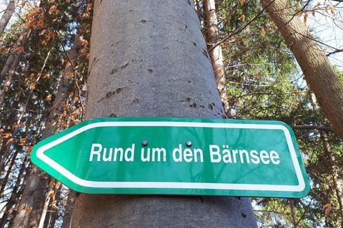 knickenberg-petra-baernsee-schild.jpg