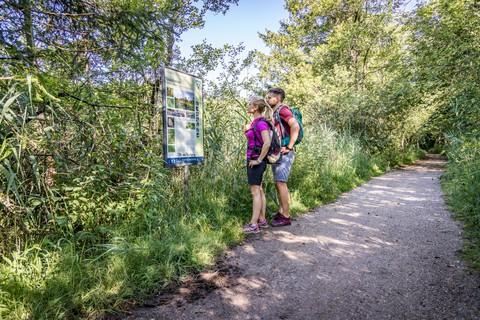 Wandern-Eggstaett-Hemhofer-Seenplatte-Naturschutztafel.jpg