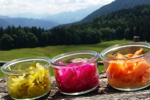 gmiashunger-sybille-hunger-gmias-glas-glaeser-fermentieren-alm .jpg