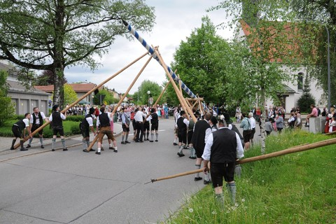 maibaum-maibaumfest-brauchtum-mai.jpg