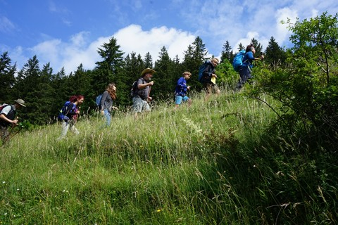 gefuehrte-Wanderung-Gruppe (1).jpg